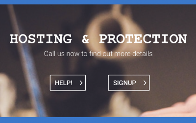 Hosting & Protection Packages